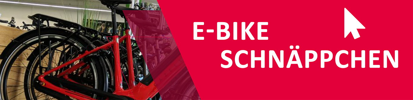 Schnäppchen e-motion e-Bike Welt Erding