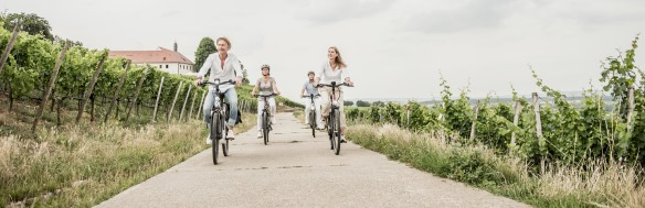 e-Bike Frühlingscheck
