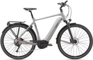 Giant Anytour E+ 0 2019 Trekking e-Bike