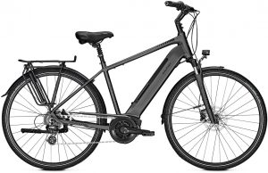 Raleigh Bristol 9 2019 Trekking e-Bike,City e-Bike
