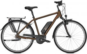 Raleigh Jersey 8 2019 City e-Bike