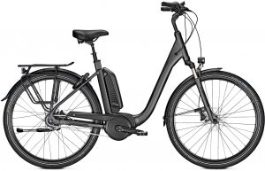 Raleigh KINGSTON XXL 2019 e-Bike XXL,City e-Bike