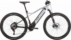 ROTWILD R.C+ HT Pro 2019 e-Mountainbike