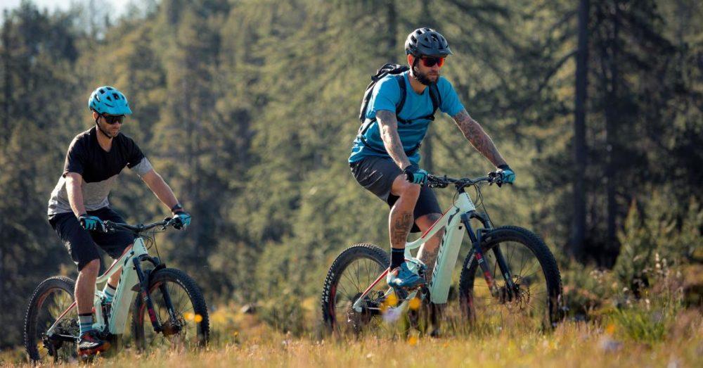 Alle Infos zum Giant SyncDrive Sport e-Bike Antrieb bei e-motion