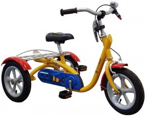 Van Raam Husky 2019 Dreirad für Erwachsene