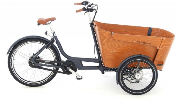 Babboe Carve Mountain 2019 Lasten e-Bike