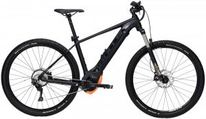 Bulls Twenty9 Evo 2 2019 e-Mountainbike