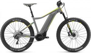 Giant Fathom E+ 3 2019 e-Mountainbike