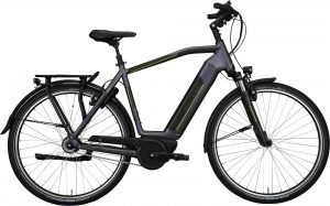Hercules Robert/-a Deluxe I-F8 2019 City e-Bike
