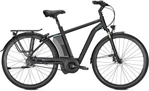 Raleigh BOSTON PREMIUM 2019 City e-Bike