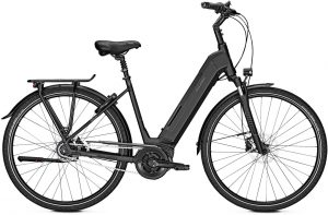 Raleigh Bristol 8 2019 City e-Bike