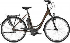 Raleigh Jersey 8 RT 2019 City e-Bike
