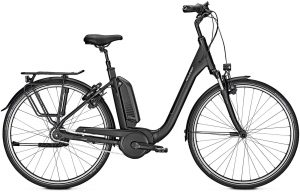 Raleigh Kingston 2019 City e-Bike