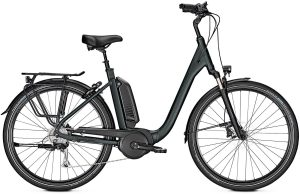 Raleigh Kingston 9 XXL 2019 e-Bike XXL,Trekking e-Bike