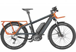 Riese & Müller Multicharger GX touring 2019