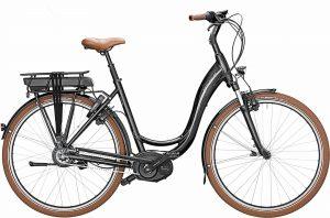 Riese & Müller Swing vario CX 2019 Trekking e-Bike