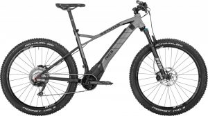 ROTWILD R.C+ HT Traction 2019 e-Mountainbike