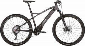 ROTWILD R.C+ HT Transalp 2019 e-Mountainbike