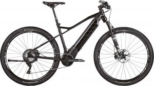 ROTWILD R.T+ Pro 2019 Cross e-Bike