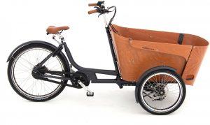 Babboe Carve Mountain 2020 Lasten e-Bike