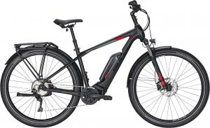 Bulls Iconic E1 2020 Trekking e-Bike