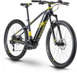 R Raymon Hardray E-Nine 7.0 2020 e-Mountainbike
