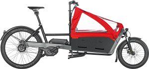 Riese & Müller Packster 60 touring 2020 Lasten e-Bike