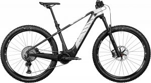 ROTWILD R.C750 Pro HT 2020 e-Mountainbike