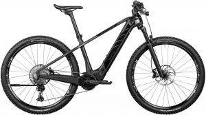 ROTWILD R.T750 Core 2020 e-Mountainbike