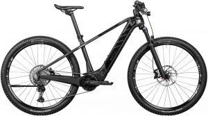 ROTWILD R.T750 Core 2020 e-Mountainbike