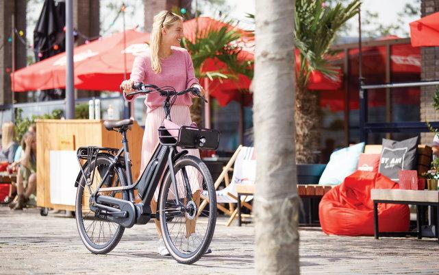 City e-Bikes 2020