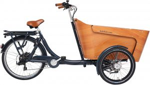 Babboe Carve-E 2020 Lasten e-Bike