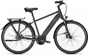 Raleigh Bristol 8 2020 City e-Bike