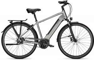 Raleigh Bristol Premium 2020 City e-Bike
