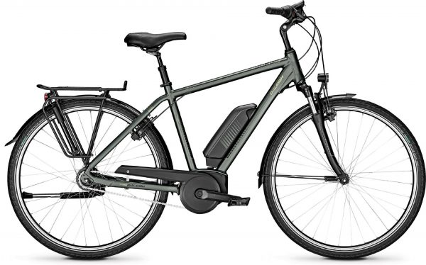 Raleigh Jersey 8 2020 City e-Bike