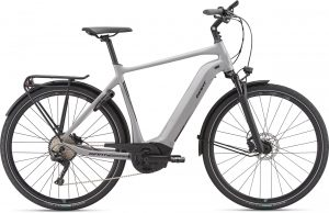 Giant Anytour E+ 0 GTS 2020 Trekking e-Bike