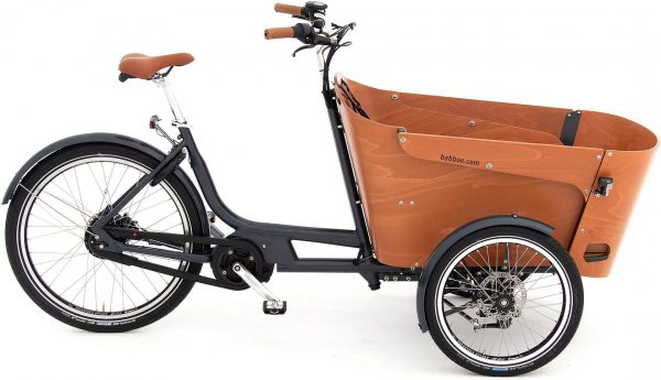 Babboe Carve Mountain 2021 Lasten e-Bike