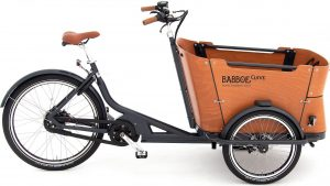 Babboe Curve Mountain 2021 Lasten e-Bike