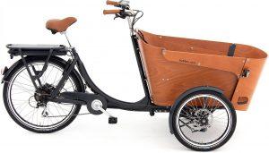 Babboe Carve-E 2021 Lasten e-Bike