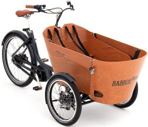 Babboe Flow Mountain 2021 Lasten e-Bike