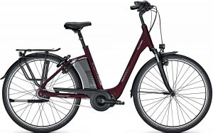Raleigh Corby 8 RT 2021 City e-Bike