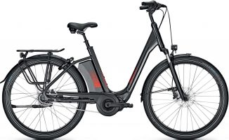 Raleigh Corby 8 XXL RT 2021