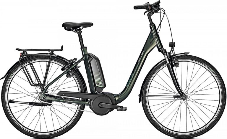 Raleigh Kingston 7 Plus 2021