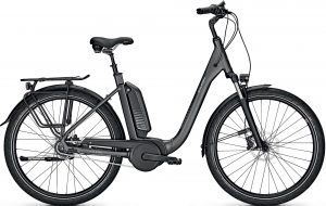 Raleigh Kingston 8 XXL RT 2021 e-Bike XXL,City e-Bike