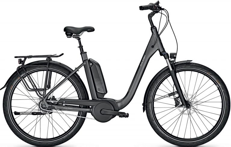 Raleigh Kingston 8 XXL RT 2021