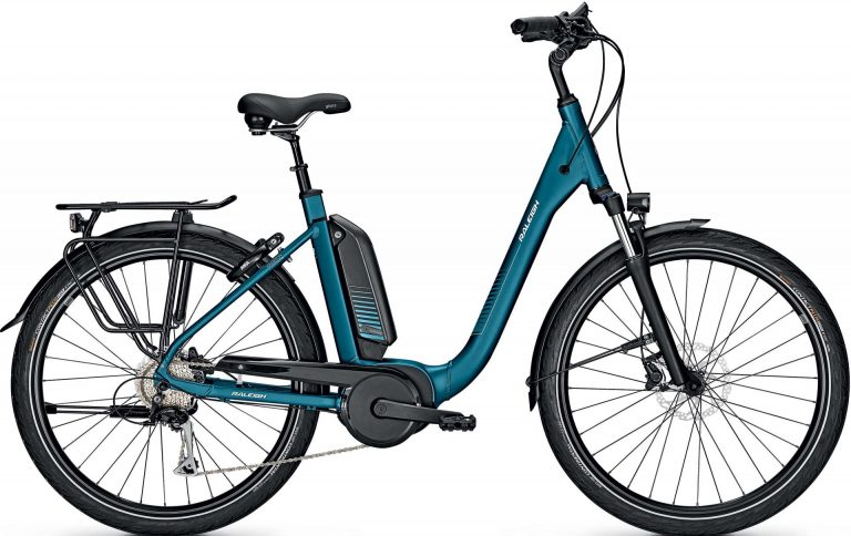 Raleigh Kingston 9 XXL 2021