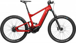 Riese & Müller Delite mountain rohloff 2021 e-Mountainbike