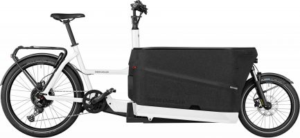 Riese & Müller Packster 70 touring 2021