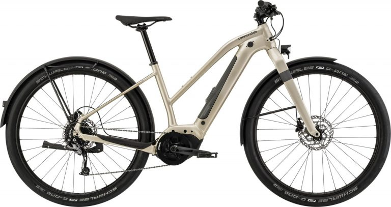 Cannondale Canvas NEO 2 Remixte 2021
