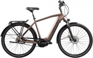 Hercules Futura Comp I-F5 2021 Trekking e-Bike